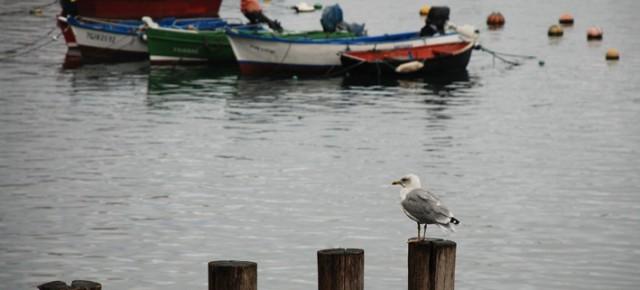Un recorrido por la costa asturiana (1)
