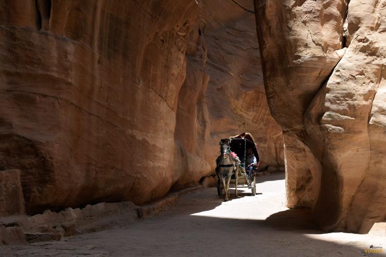 Carruaje tirado por caballos en el Siq. Petra. Jordania