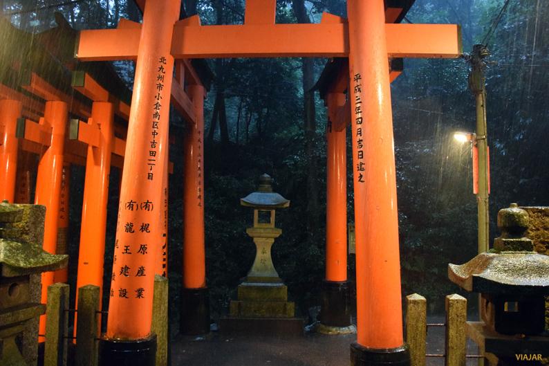 Torii bajo la lluvia. Fushimi Inari. Japón