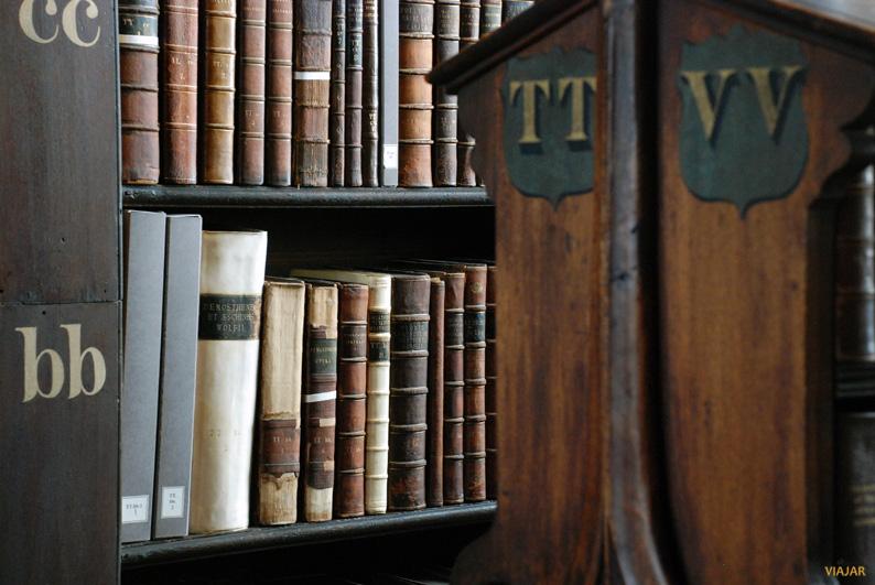 Detalle de la antigua biblioteca del Trinity College. Dublin