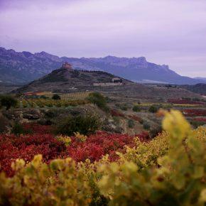 Enoturismo en Vivanco, una estupenda escapada otoñal en La Rioja