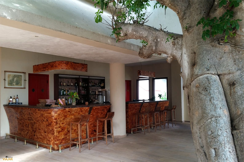 Baobab bar. Essque Zalu Zanzibar