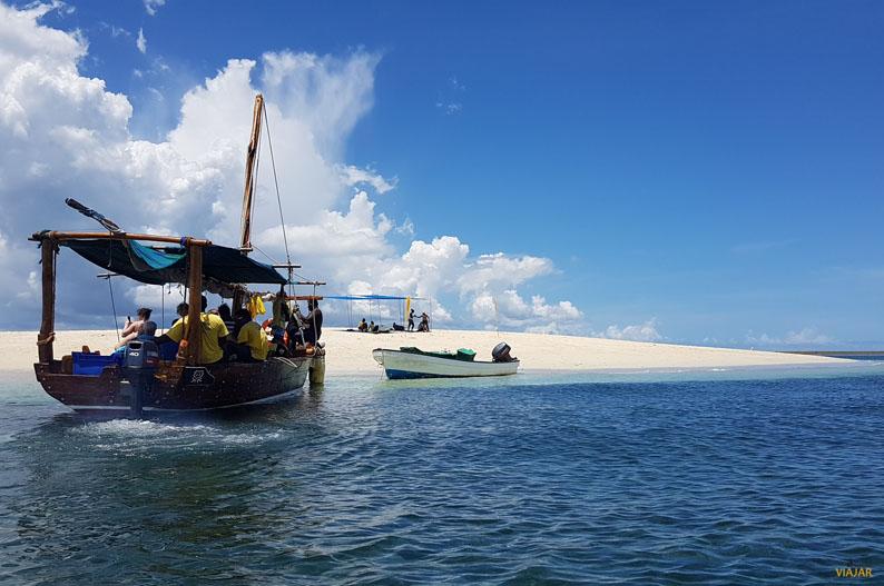 Excursion Safari Blue. Zanzibar