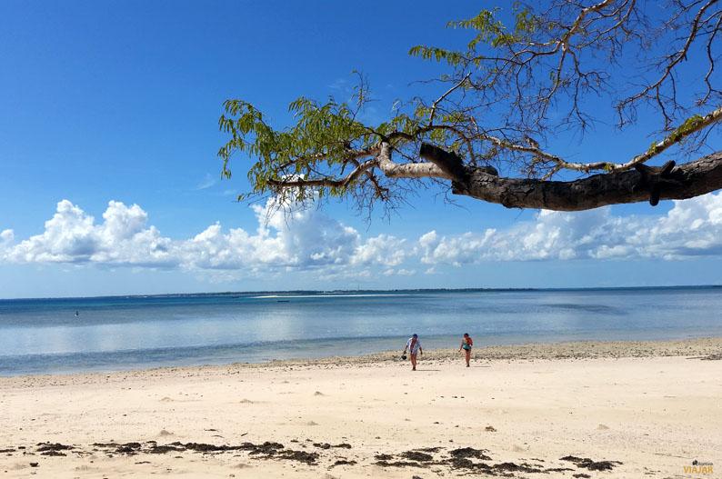 Playa de la isla de Kwale. Safari Blue