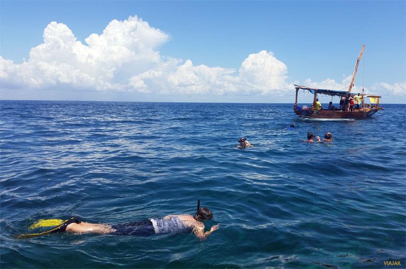 Practicando snorkel. Safari Blue