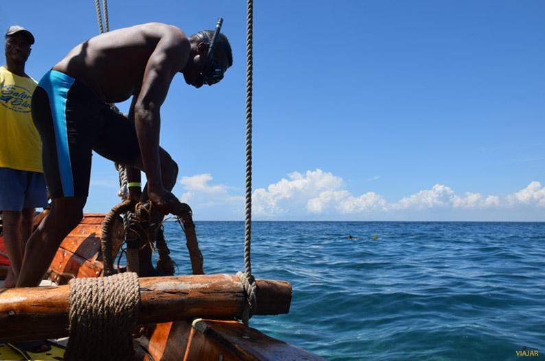 Snorkel. Safari Blue