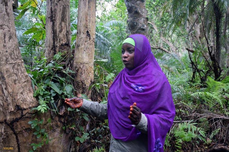 Visita guiada al bosque de Jozani. Que visitar en Zanzibar
