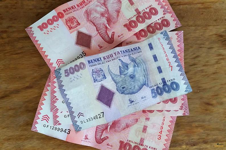 Chelines tanzanos. Viajar a Zanzibar