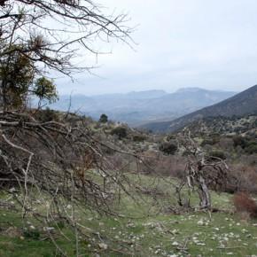 Sierra Mágina: naturaleza, arte y gastronomía en el corazón de Jaén