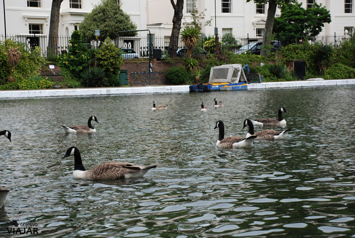 Browning's Pool. Regent's Canal