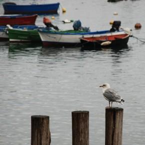Un recorrido por la costa asturiana (I)