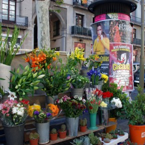 Rincones de Barcelona: La Rambla