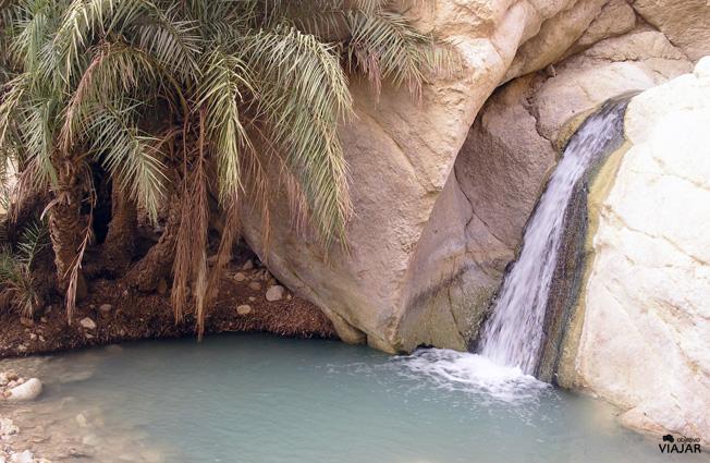 Cascada del oasis de Chebika. Túnez