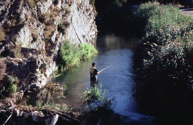 El Guadalaviar es uno de los mejores ríos trucheros de España