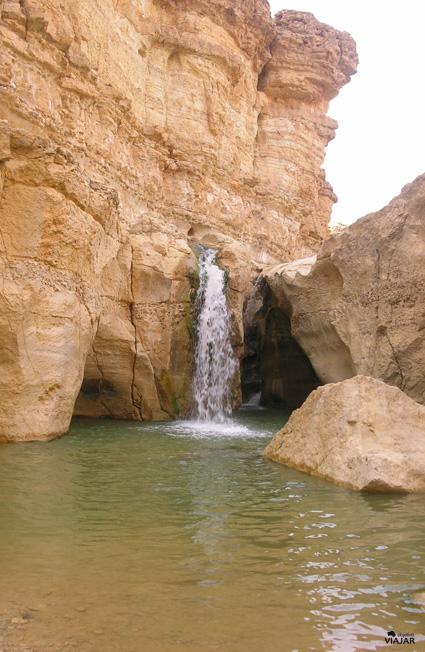 Gran cascada del oasis de Tamerza. Túnez