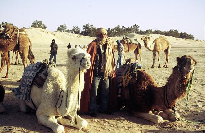 Los guías de los dromedarios en el Sáhara tunecino. Túnez