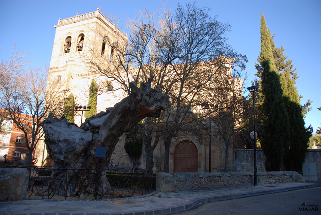 Iglesia del Espino y olmo seco. Soria