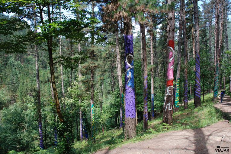 El bosque de Oma. Vizcaya