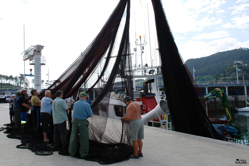 Pescadores faenando en el puerto de Lekeitio