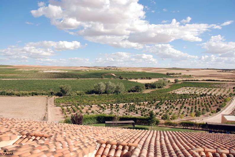 Vista de los viñedos desde el hotel. Finca La Estacada