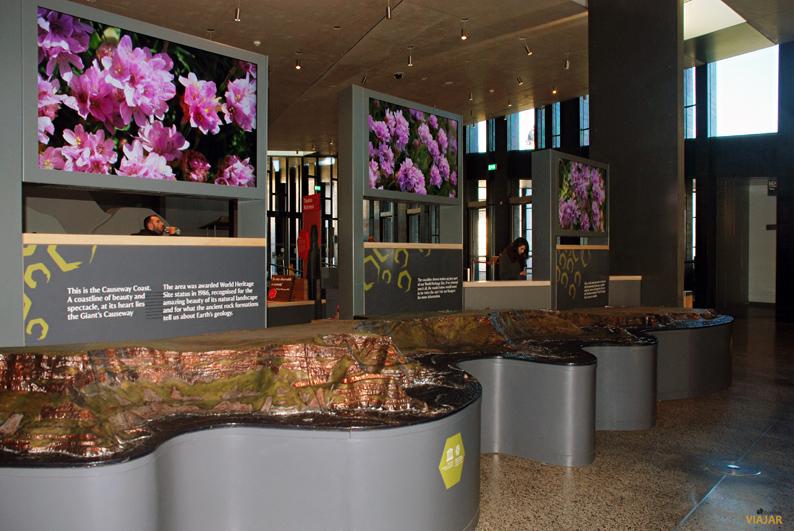 Exposición en el centro de visitantes. Calzada del Gigante