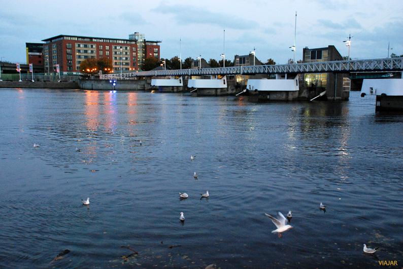 Paseando a orillas del Lagan. Belfast