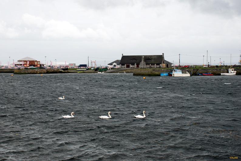 Vista de la bahía de Galway