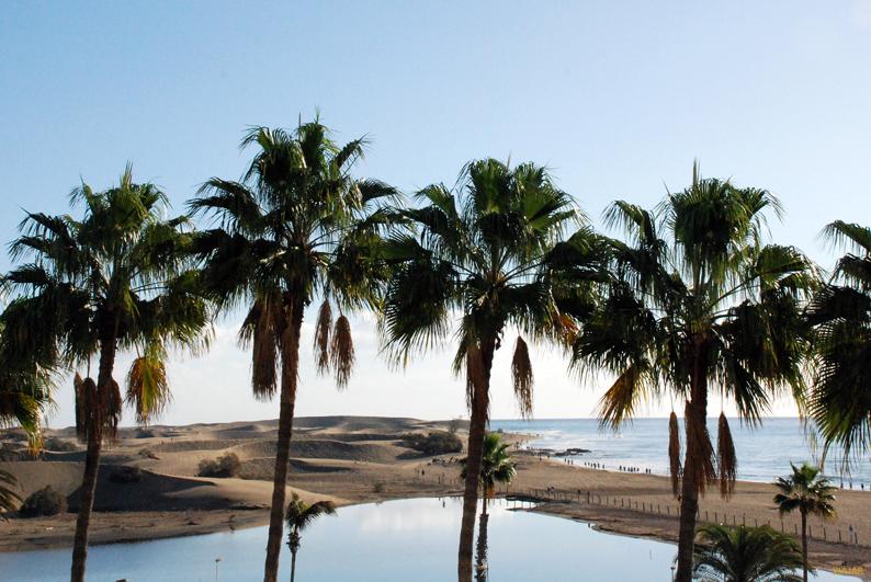 Vistas desde la terraza de mi habitación. Seaside Palm Beach