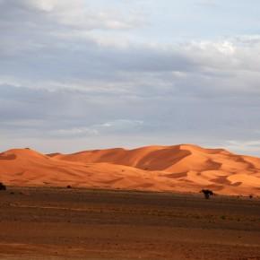 Tomándole el pulso a Marruecos: primeras impresiones