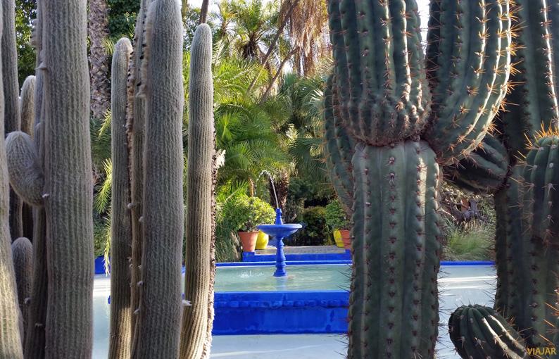 Estanque del Jardín Majorelle. Marrakech
