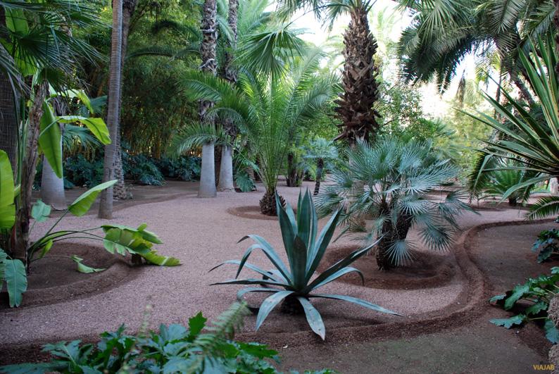 Luces y sombras en el Jardín Majorelle. Marrakech
