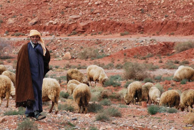 Pastor bereber. Marruecos