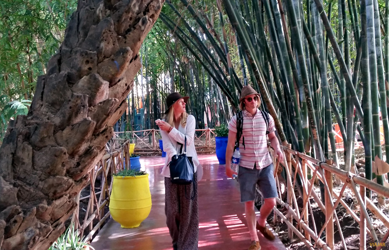 Turistas en el Jardín Majorelle. Marrakech