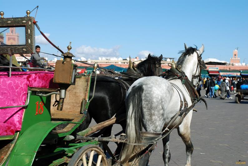 Calesa en Marrakech