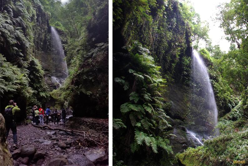 Cascada. Bosque de Los Tilos. La Palma