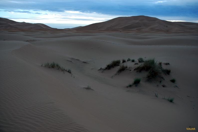 Dunas de Erg Chebbi. Marruecos