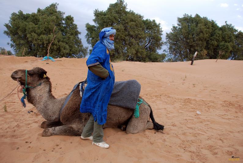 Nuestro paciente guía. Erg Chebbi. Marruecos