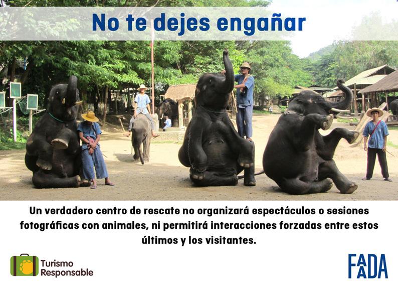 Turismo responsable con elefantes