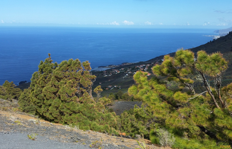 Los Canarios. Fuencaliente. La Palma