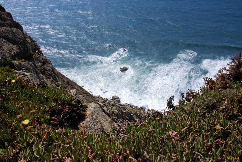 Fragmento de la línea costera del Cabo da Roca