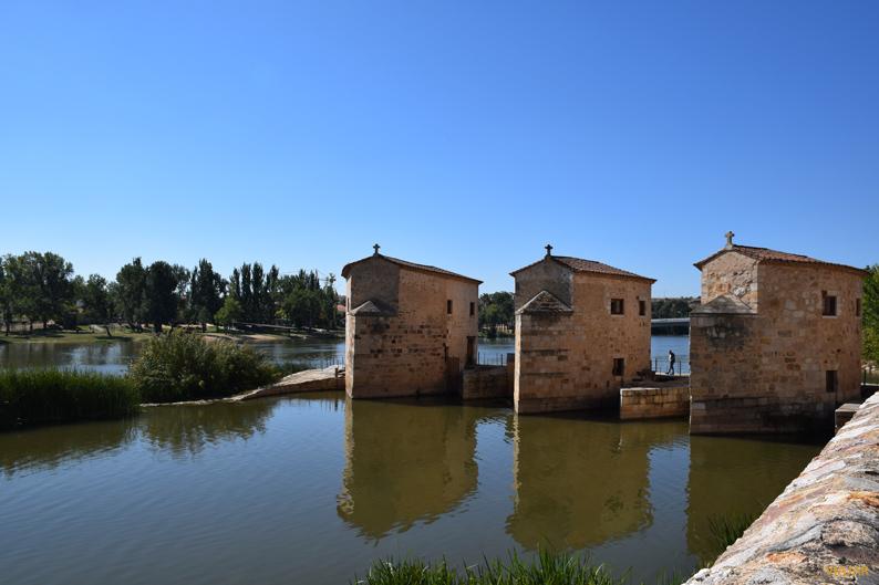 Aceñas de Olivares. Zamora