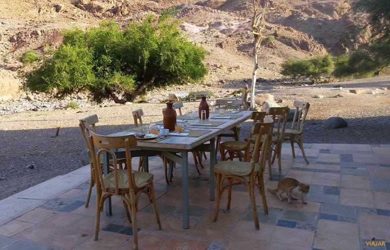 Desayunando al aire libre en el Feynan Ecolodge. Dana. Jordania