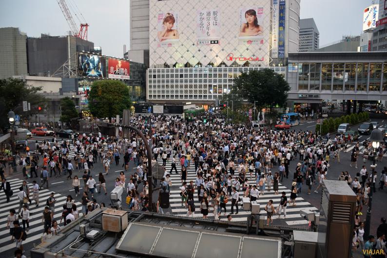Cruce de Shibuya. Tokio
