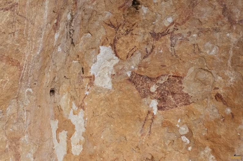 Pinturas rupestres. Solana de las Covachas, Nerpio. Sierra del Segura