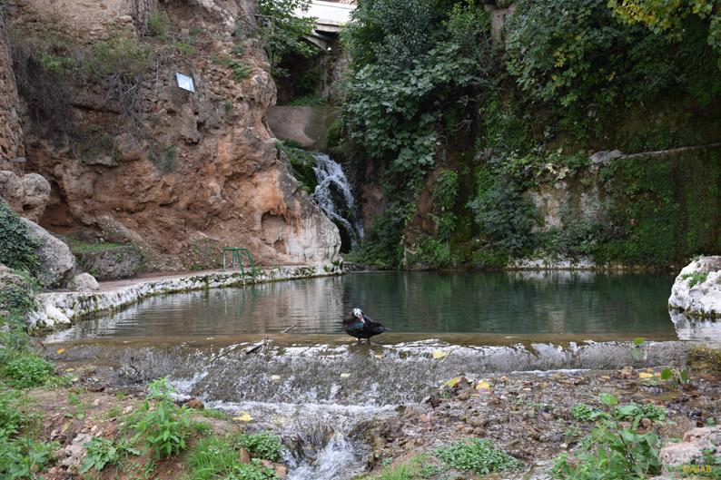 Piscina natural Charco de Las Canales, Letur. Sierra del Segura