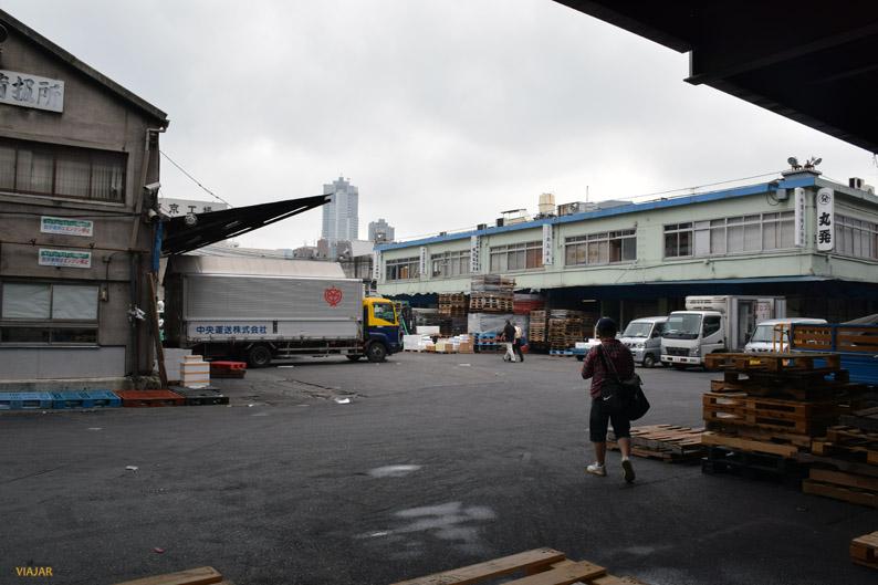 Rumbo al mercado interior de Tsukiji