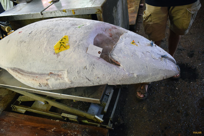 Un atún enorme en el mercado Tsukiji