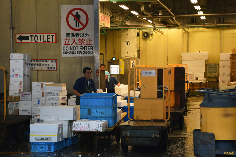 Zona de acceso restringido. Mercado Tsukiji