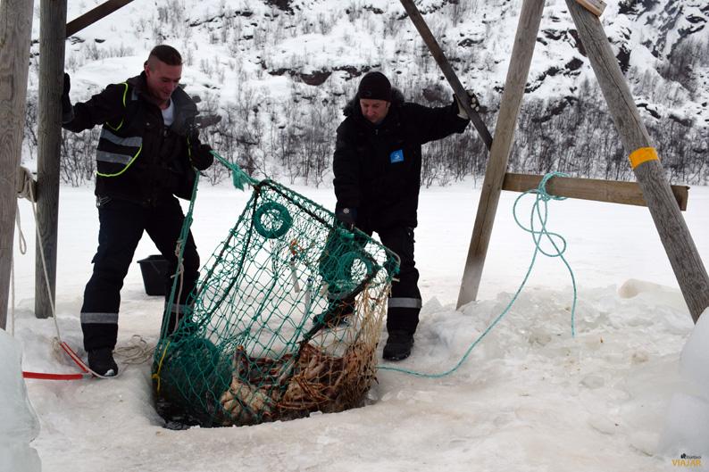 Pesca del cangro real en Kirkenes. Laponia noruega