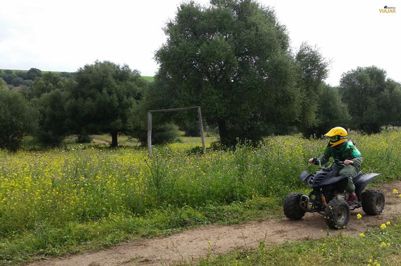 Ruta en quad en el Cortijo El Espagarral. Provincia de Sevilla